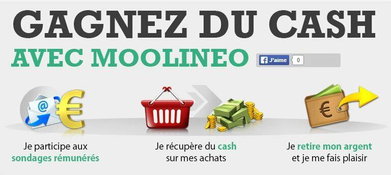 Comment gagner du cash avec le site Moolineo ?