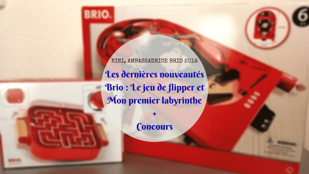 Brio flipper labyrinthe - Boîte à outils créative BOOST LEGO 17101